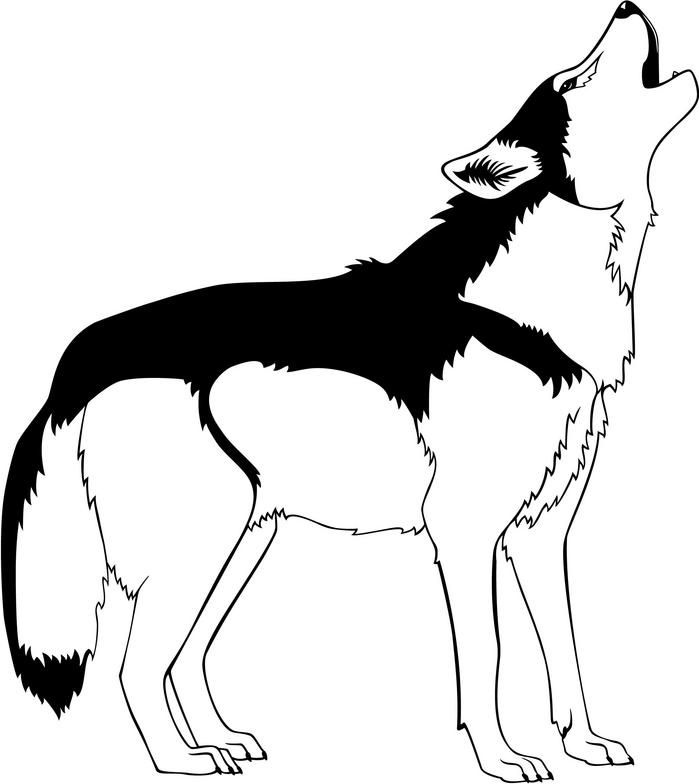 Howling Wolf Clipart - Clipart Kid