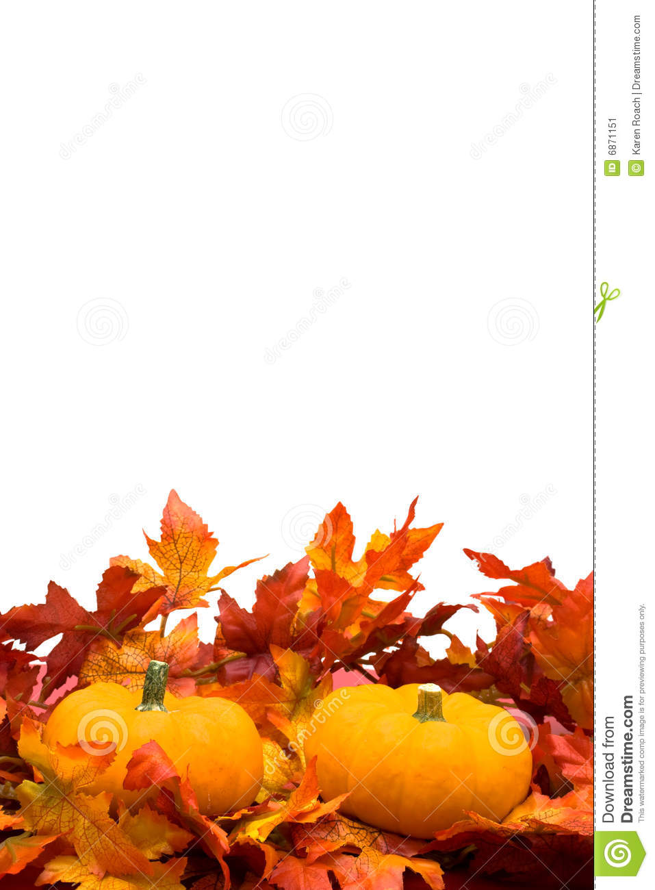 Fall Leaves With Pumpkin On White Background Fall Harvest