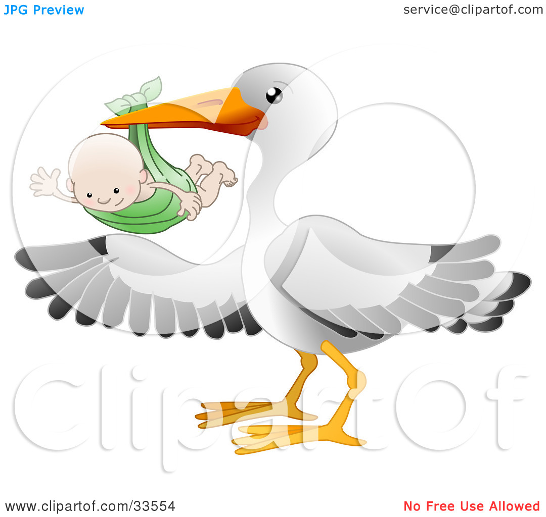 Clipart Illustration Of A White Stork Bird With Black Tipped Wings