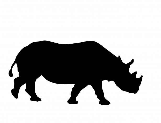 Rhino Silhouette Clipart Free Stock Photo   Public Domain Pictures