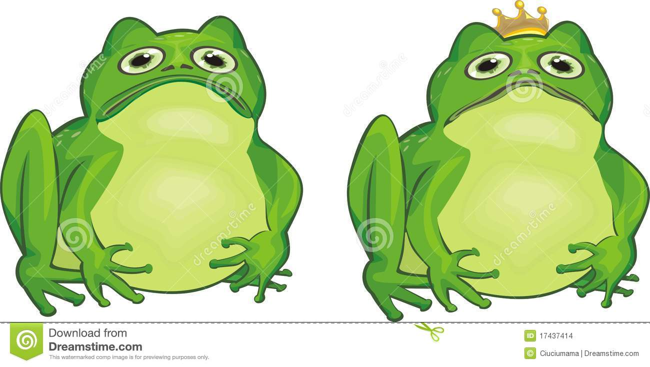 Frog Stock Images   Image  17437414