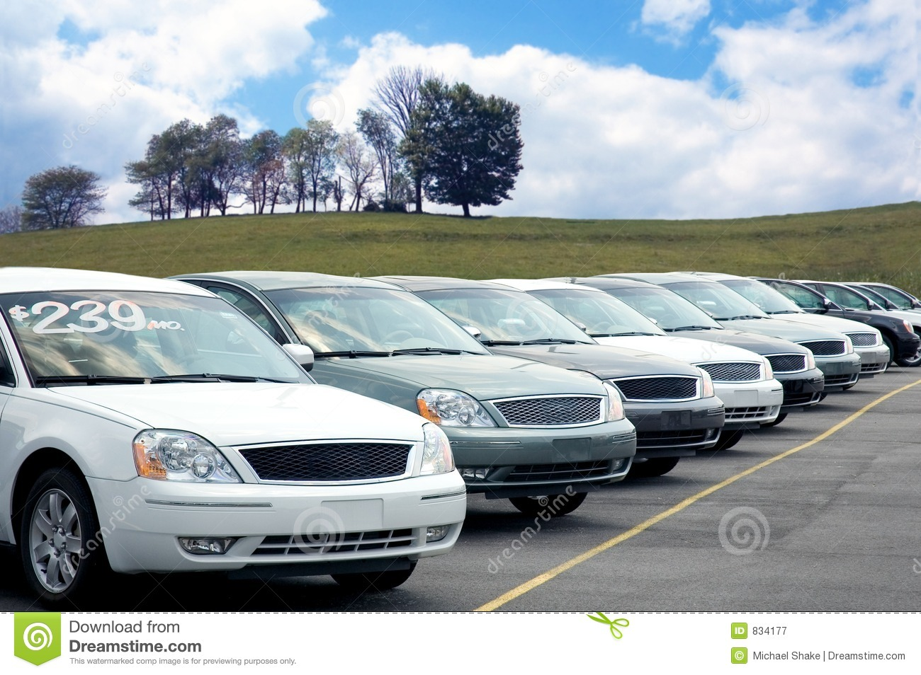 Car Dealers Lot Full Of Sedans For Sale  More Of My Car Photos Can Be