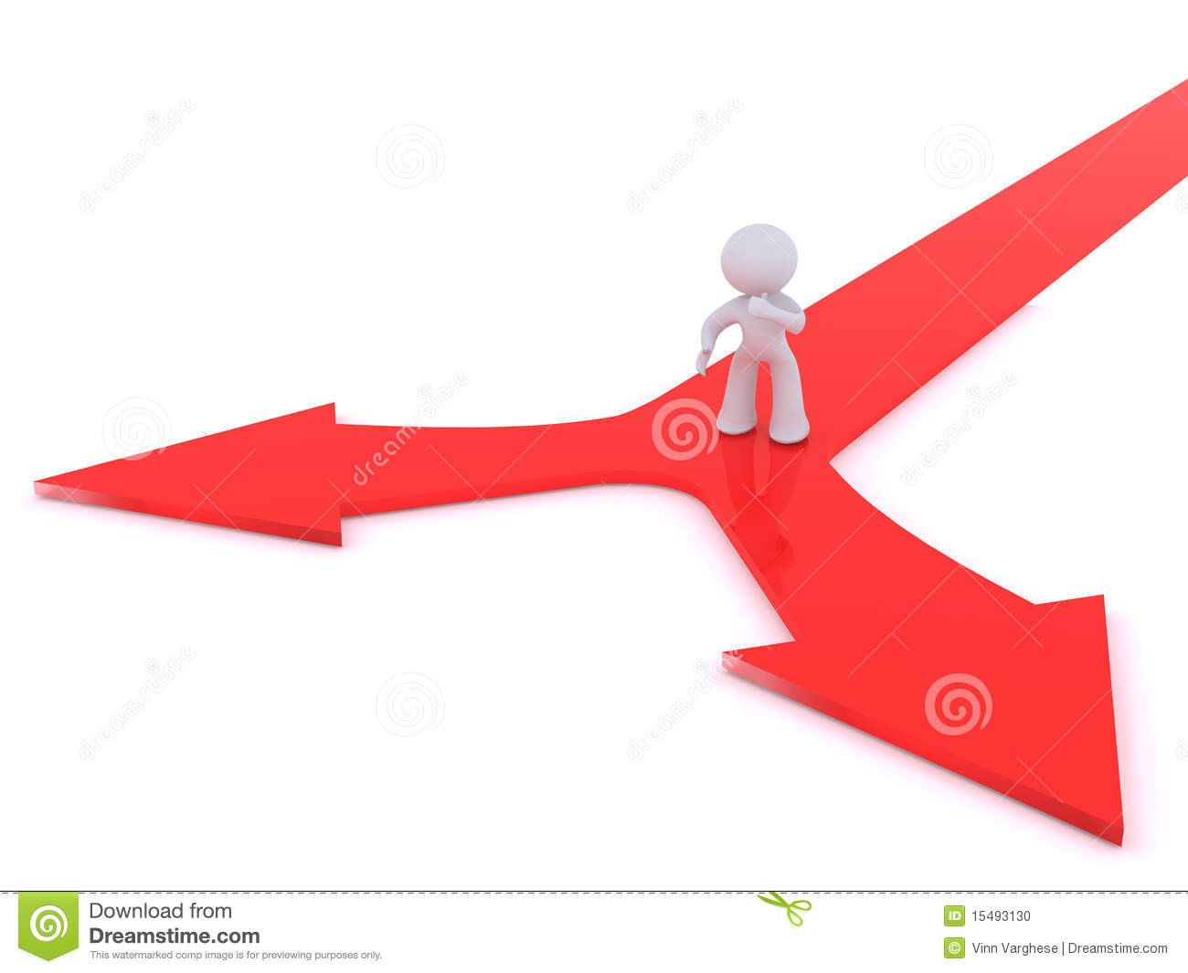 Decision Making At A Y Junction Stock Photo   Image  15493130