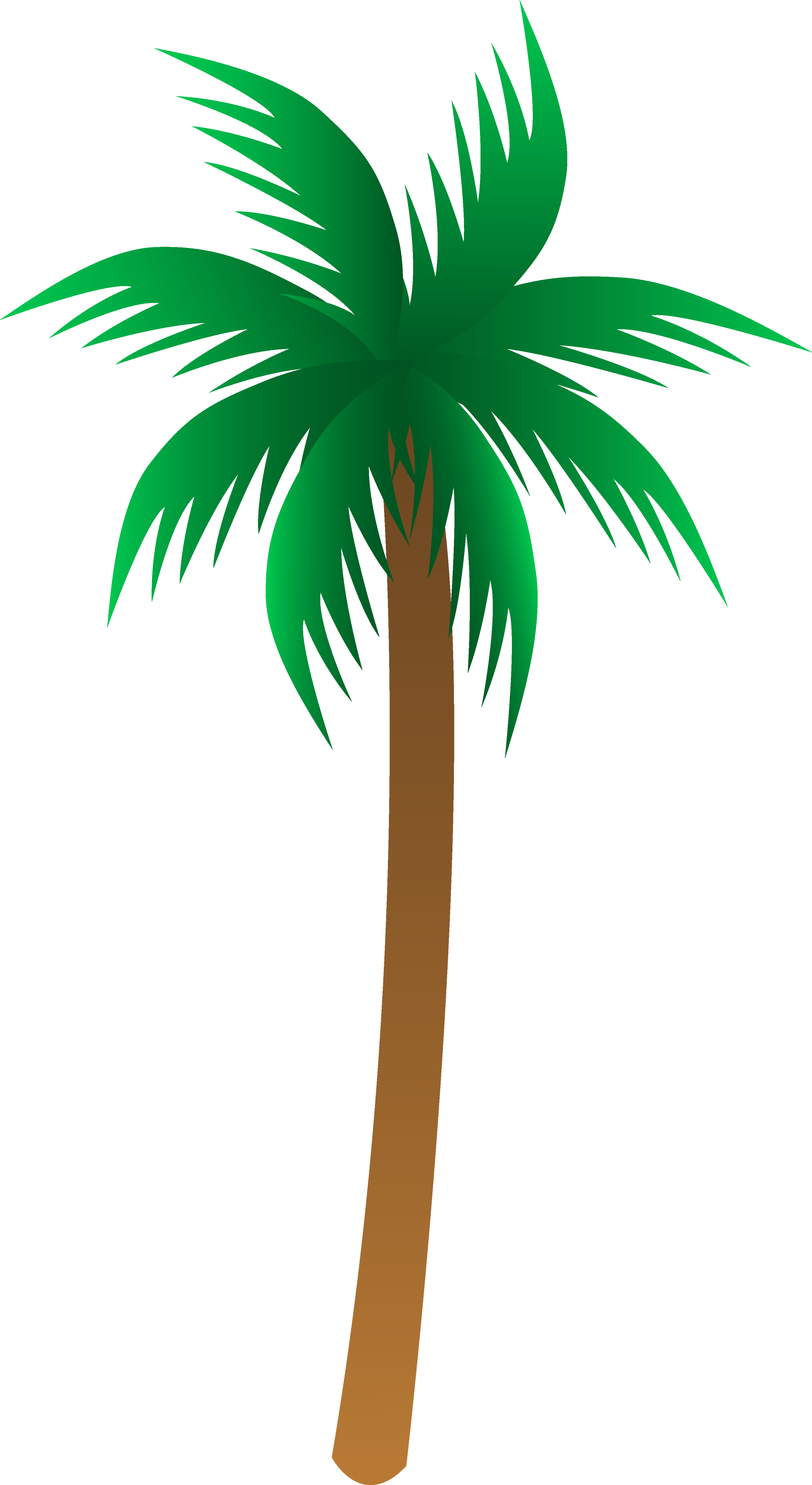 Palm Tree No Background   Clipart Panda   Free Clipart Images