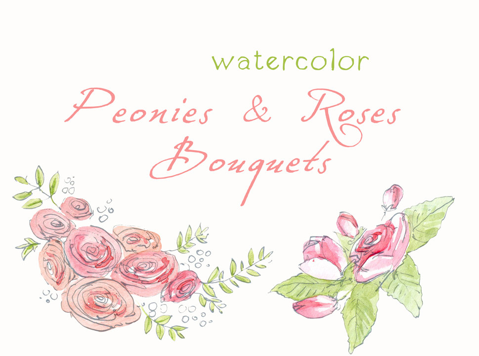 Watercolor Peony Clipart Digital Clipart Watercolor