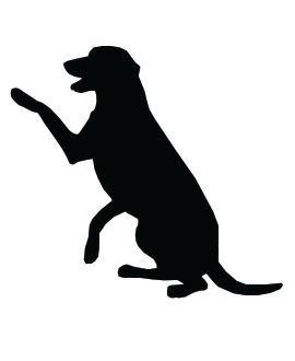Dog Shadow Clipart - Clipart Kid