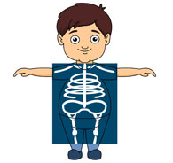 Clip Art X-ray Clipart x ray clipart kid boy taking an ray