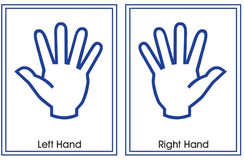 Right Hand Clipart