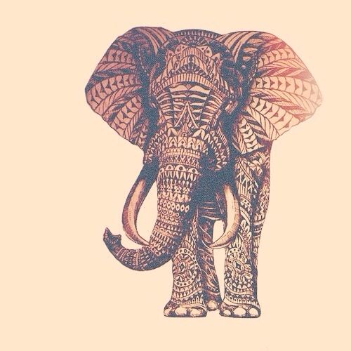 Boho Afro By Deisi Elephant Wallpaper For The Boho Elephant Wallpaper