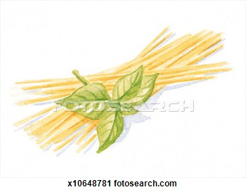 Clipart   Basil Food Herb Indoors Interior  Fotosearch   Search