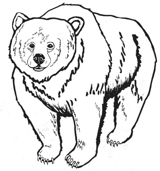Bear Black And White Clipart - Clipart Kid