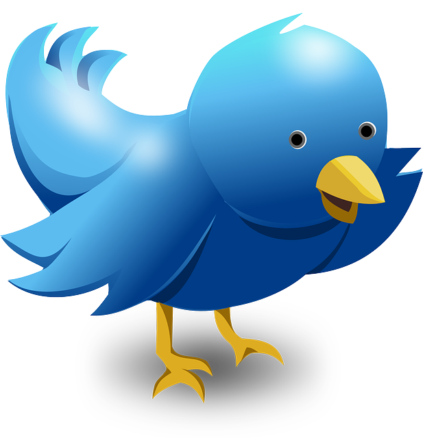 Free Vector Graphic  Twitter Tweet Bird Funny Cute   Free Image On