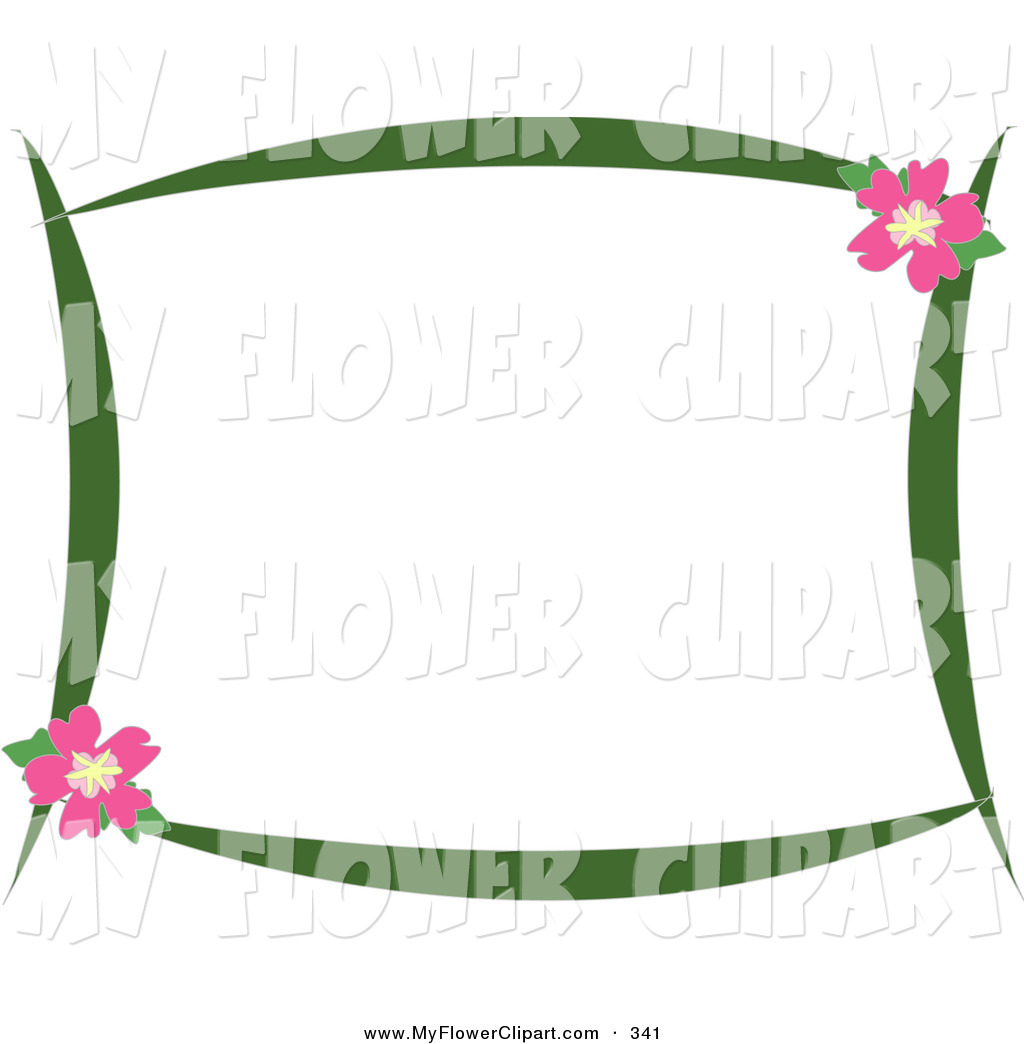 Pretty Stationery Border Of Green Branches And Pink Hibiscus Flowers