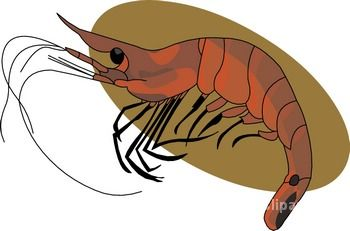 Seafood Clipart - Clipart Kid