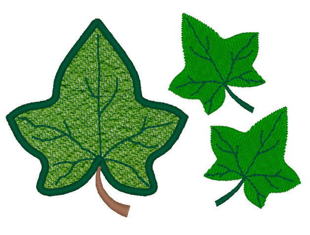 Images Of An Ivy Leaf   Free Cliparts That You Can Download To You