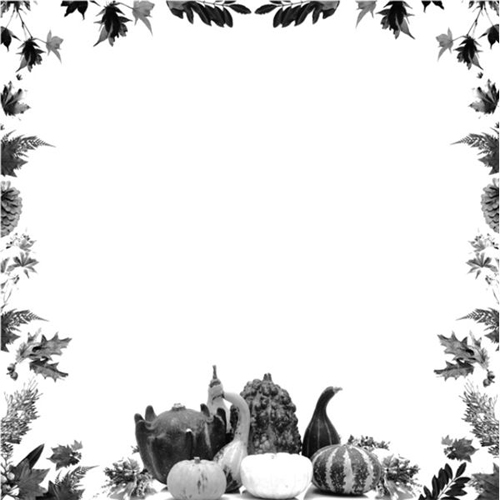Free Thanksgiving Borders And Frames   Free Clipart
