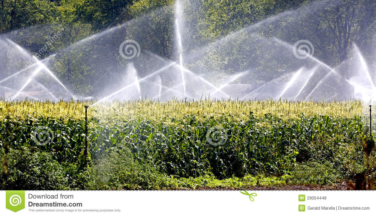 Crop Irrigation  Royalty Free Stock Photos   Image  29054448