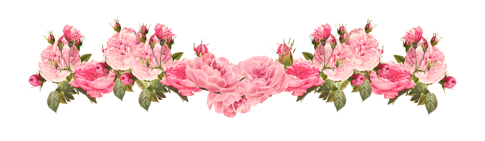 Free Vintage Rose Borders   Vintage Roses Scrapbooking Embellishment