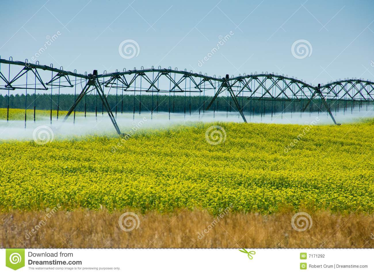 Irrigation System  Stock Photography   Image  7171292