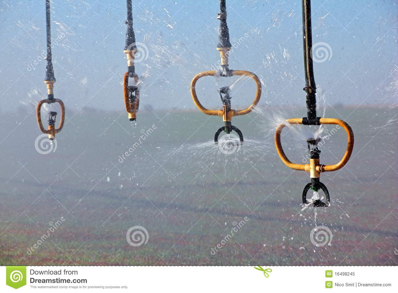 Water Sprinklers Royalty Free Stock Photo   Image  16498245
