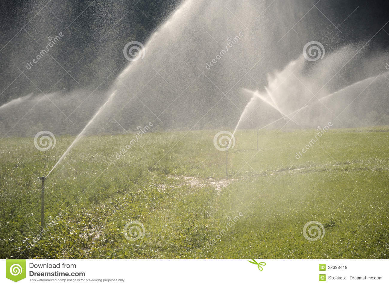 Water Sprinklers Royalty Free Stock Photos   Image  22398418