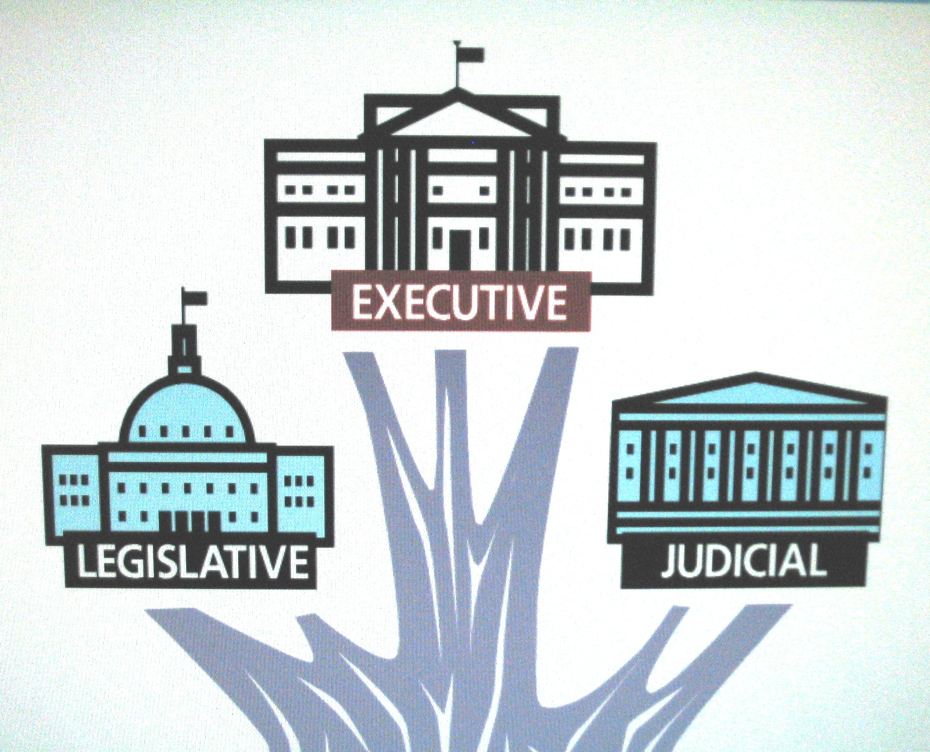 Branches Of Government Branches Of Government Game Show President For