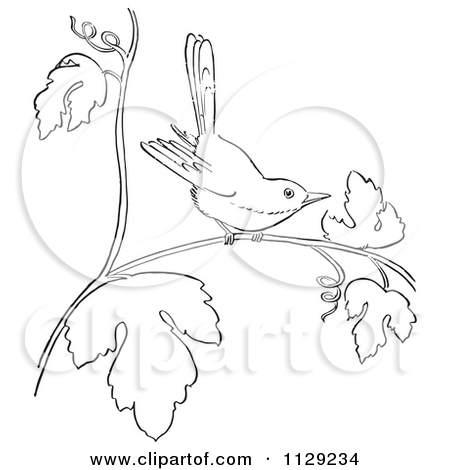 Cartoon Of A Retro Vintage Black And White Mockingbird In A Tree Line