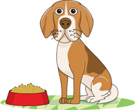 Dog Standing Near Red Dog Food Bowl