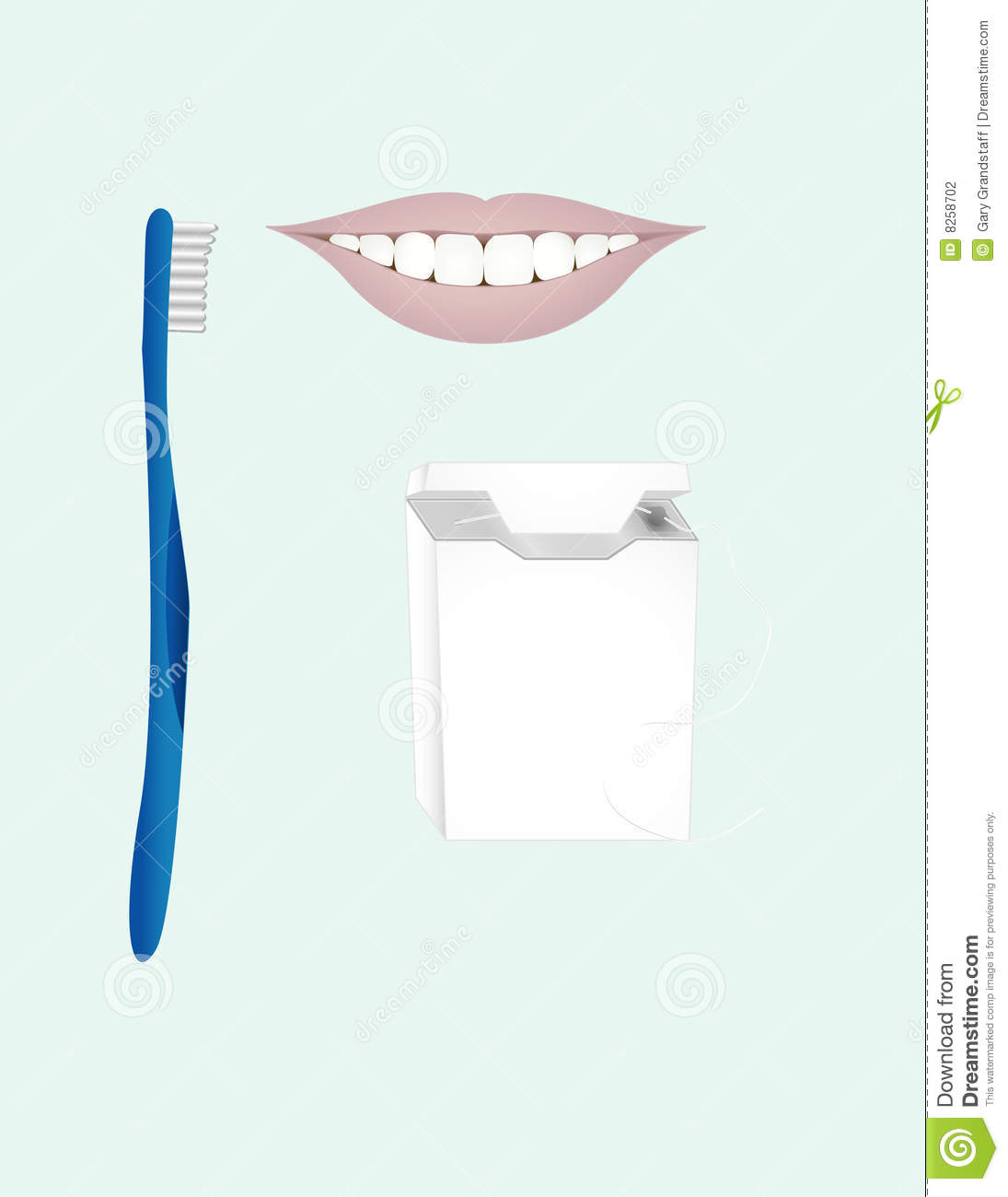 Dental Clip Art Stock Photography   Image  8258702