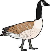Goose Clipart Cartoons   Clipart Panda   Free Clipart Images