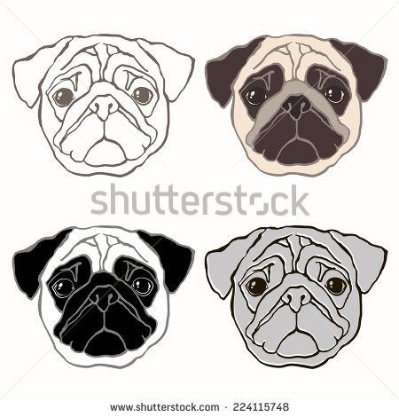 Vector Set Of Pug S Face  Hand Drawn Vector Illustration  Sketch Four