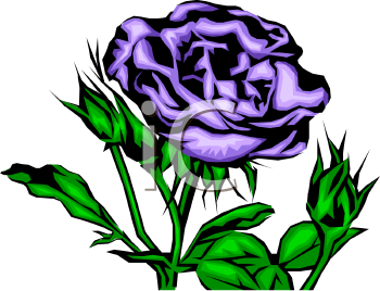 Find Clipart Rose Clipart Image 59 Of 326