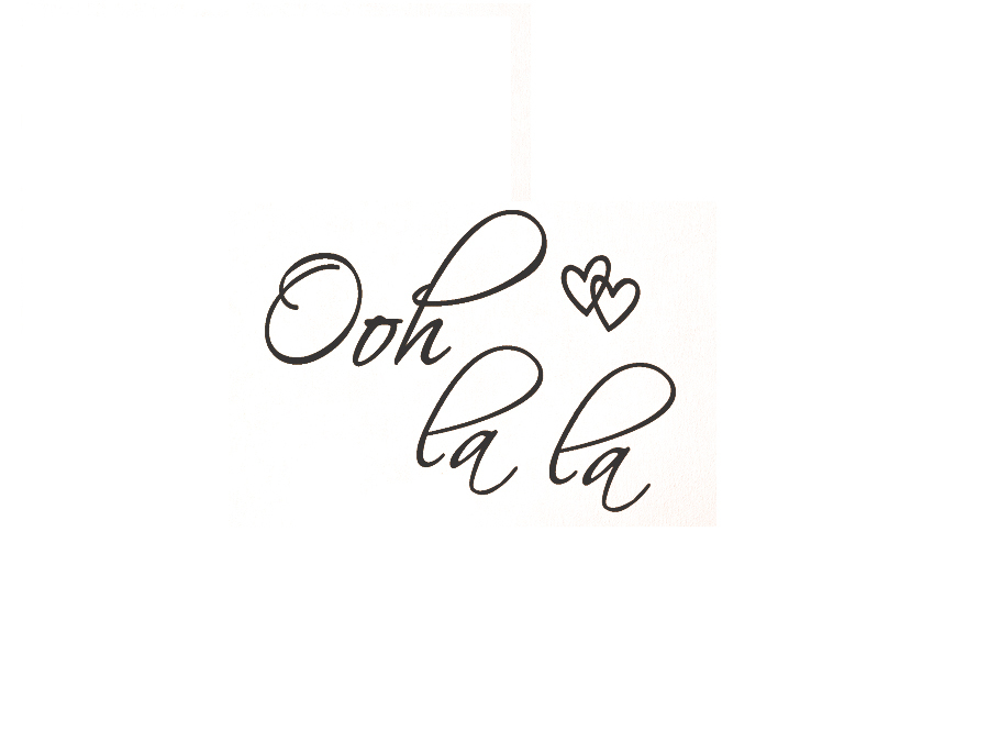 Ooh La La Paris France Hearts Love Quote Vinyl Wall Decal Decor Art