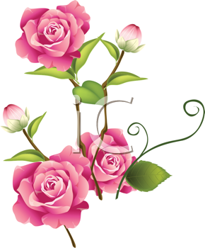 Royalty Free Rose Clip Art Flower Clipart