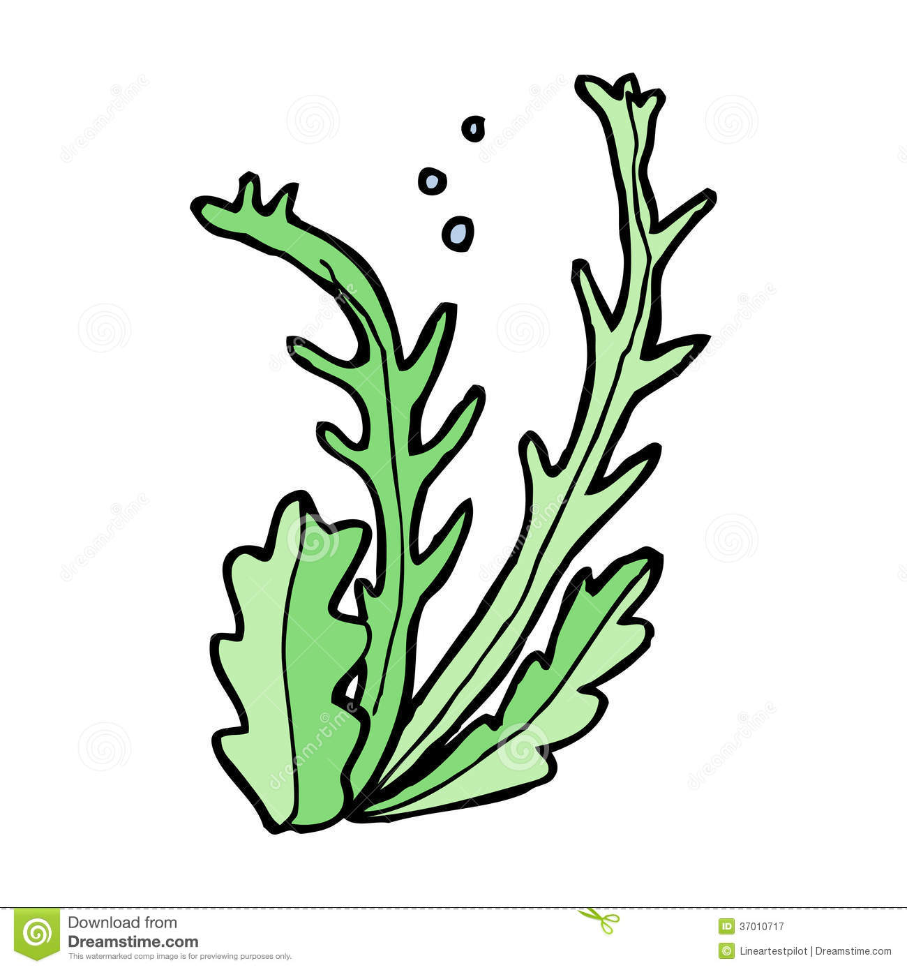 Seaweed Clipart   Clipart Panda   Free Clipart Images