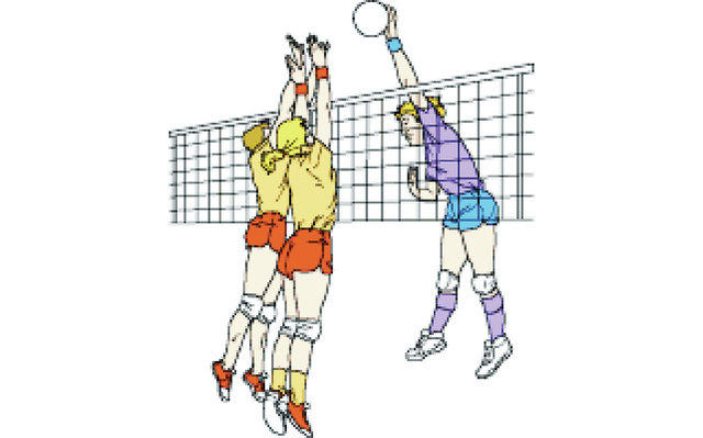 City Adult Co Ed Volleyball League Plans Announced   Columbia Daily