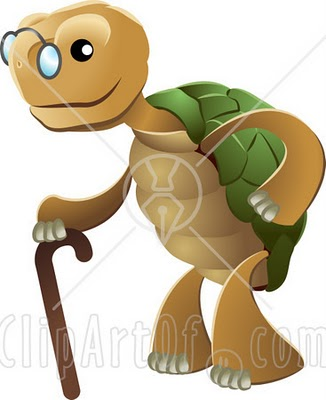 Cute Turtle Clipart Image Search Results