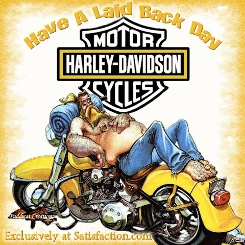 Harley Davidson Motorcycles Pictures   Things That Make You Go Hmmm