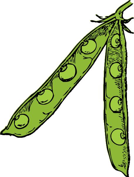 Pea Pod Clip Art At Clker Com   Vector Clip Art Online Royalty Free