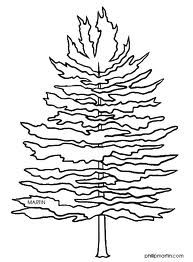 Pine Tree Coloring Page   Google Search   Embroiderediculous    Pinte