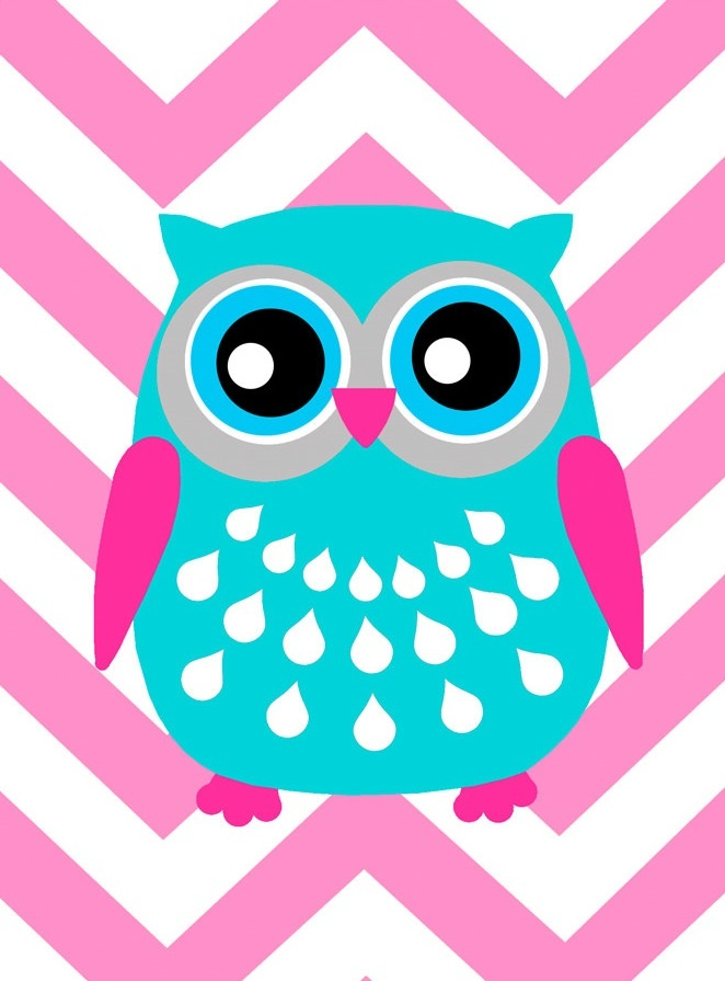 Cute Owl Graphic