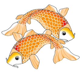 Clip Art Koi Fish Clipart koi fish clipart kid two orange swimming jpeg