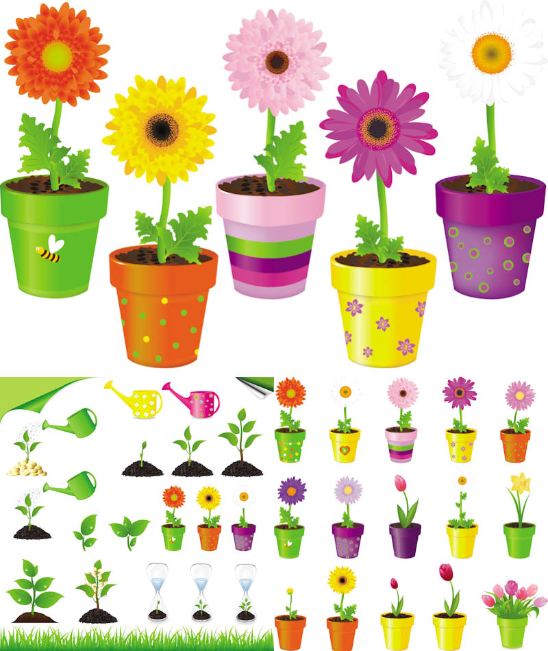 Flower In Pot Illustrations Vector