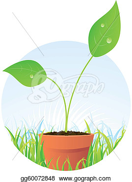 Flower Seeds Clipart Spring Plant Seed In Pot