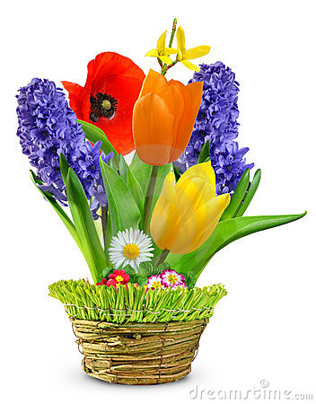 Spring Flower Pot Clipart Spring Flowers In A Pot