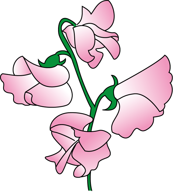 Sweet Pea Flower Clip Art   Clipart Panda   Free Clipart Images