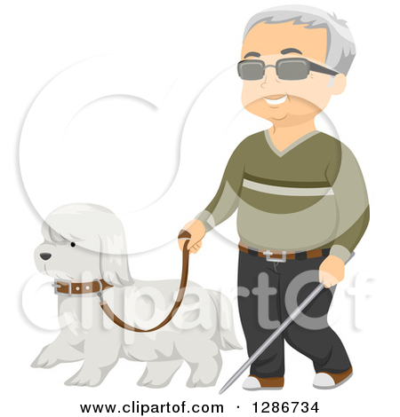 White Seeing Eye Guide Dog Walking With A Happy Blind Senior White Man