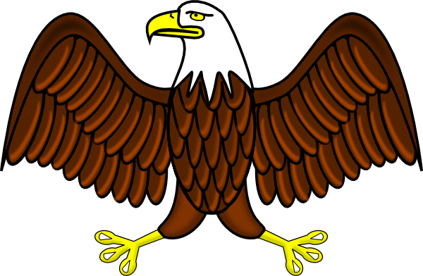 Bald Eagle Clip Art At Clker Com   Vector Clip Art Online Royalty