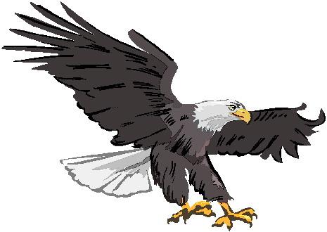 Clip Art   Clip Art Eagle 609339
