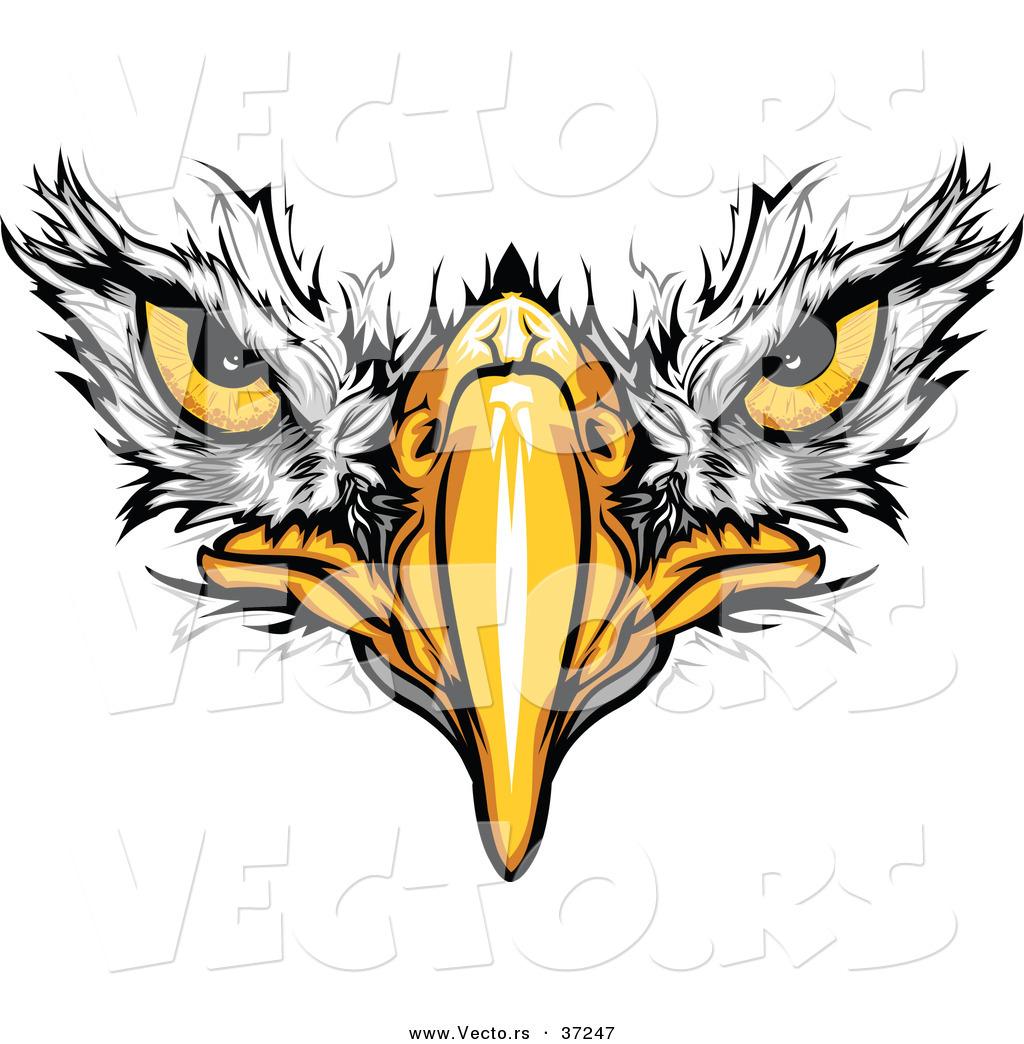 Cartoon Eagle Clipart - Clipart Kid